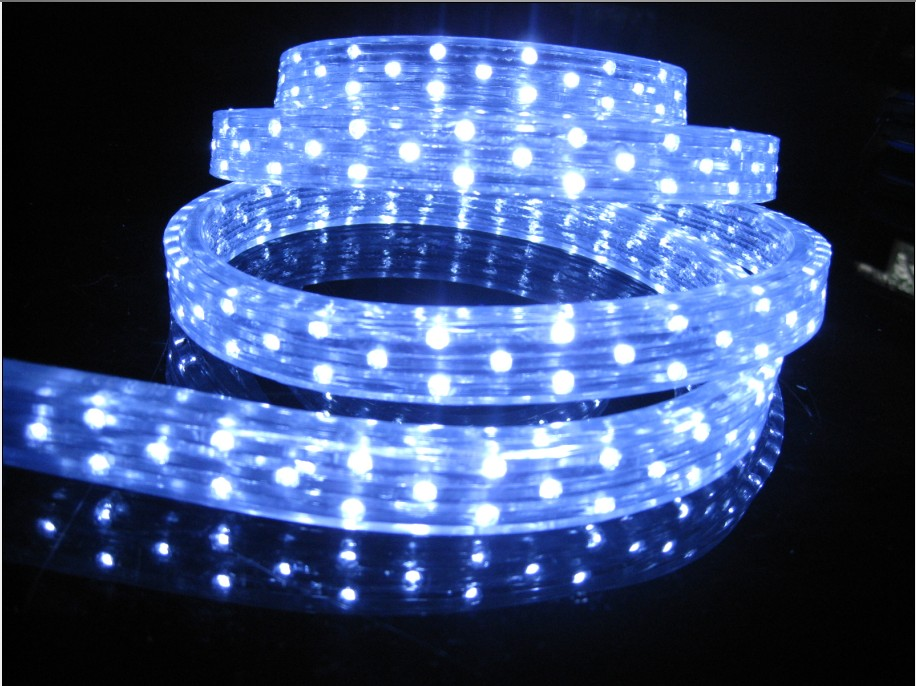 LED Strip Lights(ACM-5050Y60X-W220)